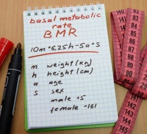 Basal Metabolic Rate