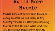 Weight loss tip: Build More Muscle